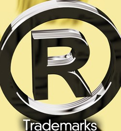 Trademark Lawyer 04